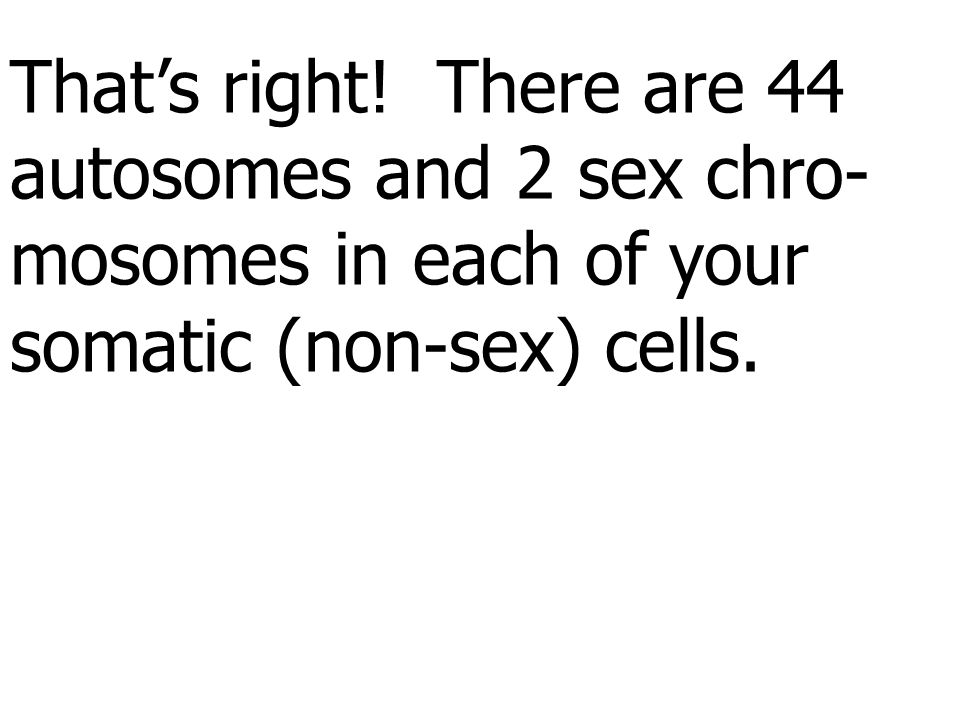 That's right! There are 44 autosomes and 2 sex chro- mosomes in each of your somatic (non-sex) cells.