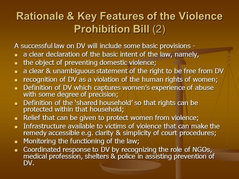 Rationale & Key Features of the Violence Prohibition Bill (2) A successful law on DV will include some basic provisions - a clear declaration of the b