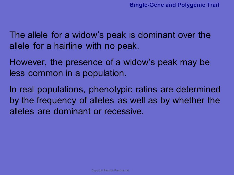 Copyright Pearson Prentice Hall Single-Gene and Polygenic Trait The allele for a widow's peak is dominant over the allele for a hairline with no peak.