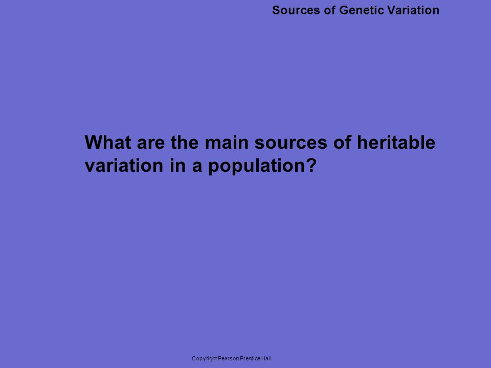 Copyright Pearson Prentice Hall Sources of Genetic Variation The two main sources of genetic variation are mutations and the genetic shuffling that results from sexual reproduction.