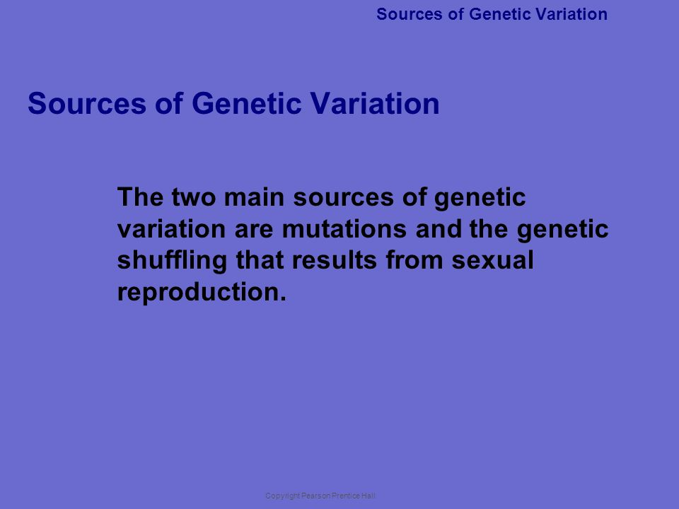 Copyright Pearson Prentice Hall 16-1 Most inheritable differences are a result of a.gene shuffling.