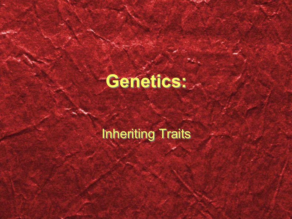 Genetics: Inheriting Traits