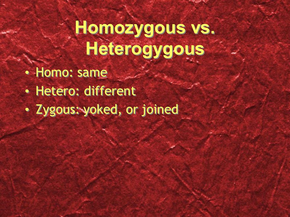 Homozygous vs.