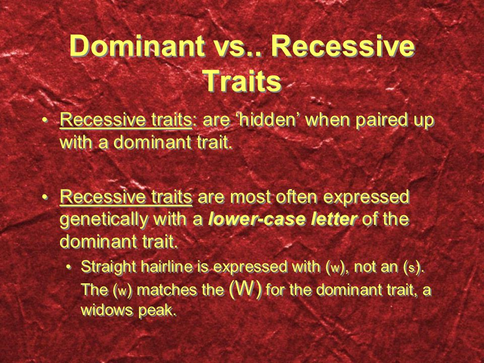 Dominant vs.. Recessive Traits Recessive traits: are 'hidden' when paired up with a dominant trait. Recessive traits are most often expressed genetica