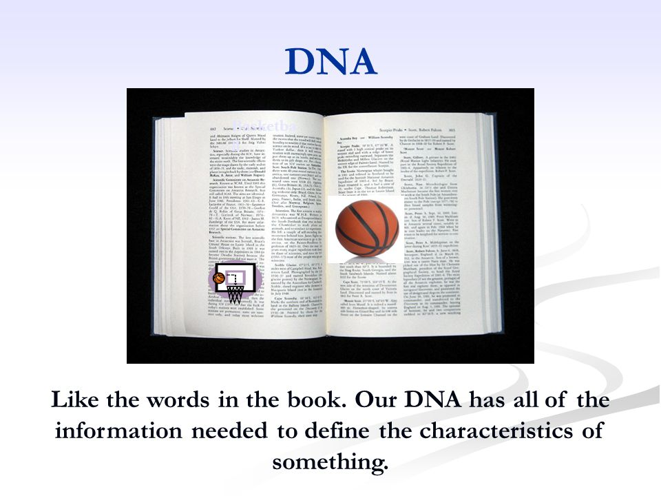 DNA Basketba ll Like the words in the book.