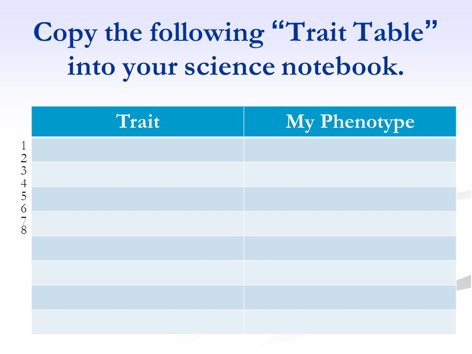Copy the following Trait Table into your science notebook. TraitMy Phenotype 1234567812345678