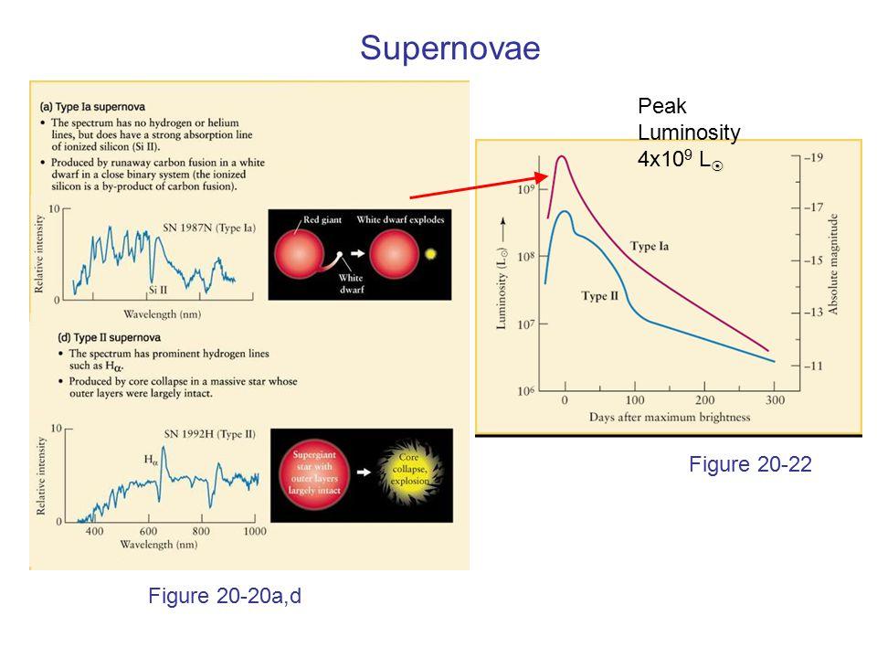 Figure 20-20a,d Figure 20-22 Supernovae  Peak Luminosity 4x10 9 L 