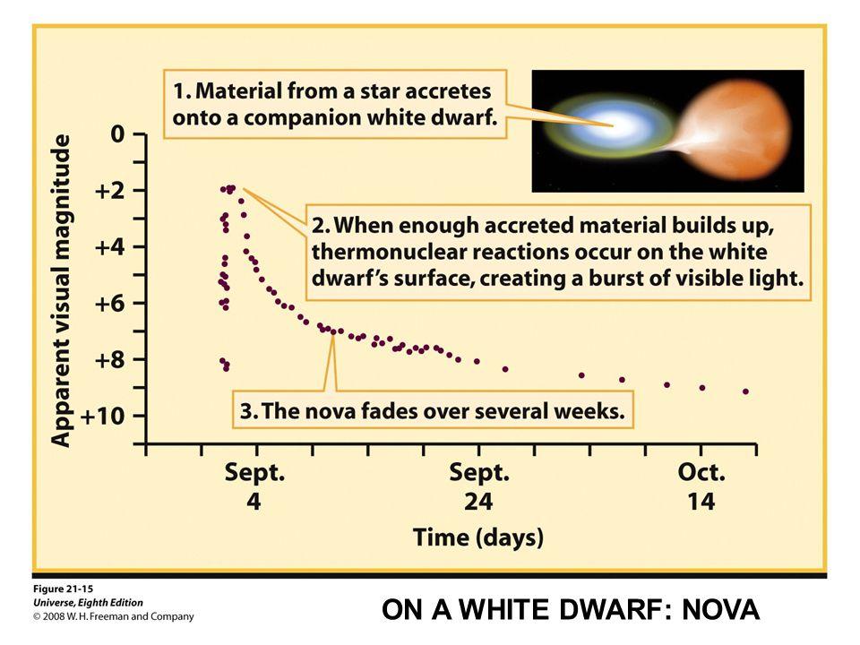 ON A WHITE DWARF: NOVA