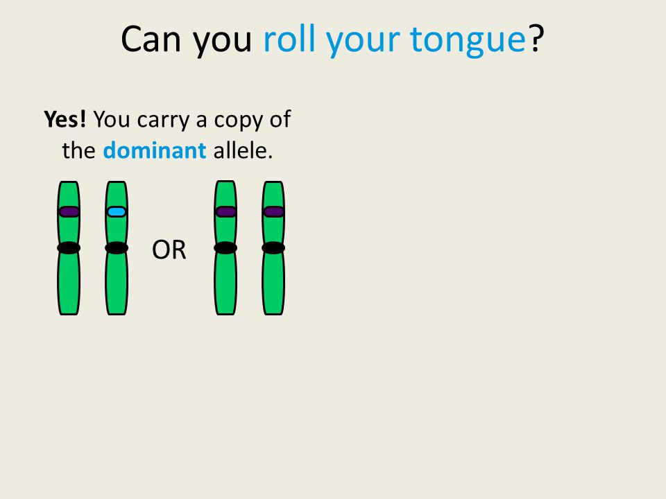 Yes! You carry a copy of the dominant allele. OR
