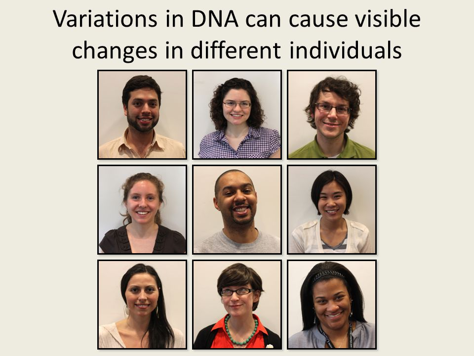 Variations in DNA can cause visible changes in different individuals