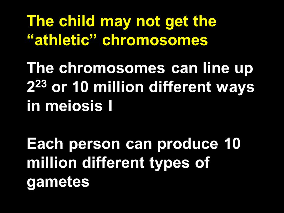 The chromosomes can line up 2 23 or 10 million different ways in meiosis I Each person can produce 10 million different types of gametes The child may