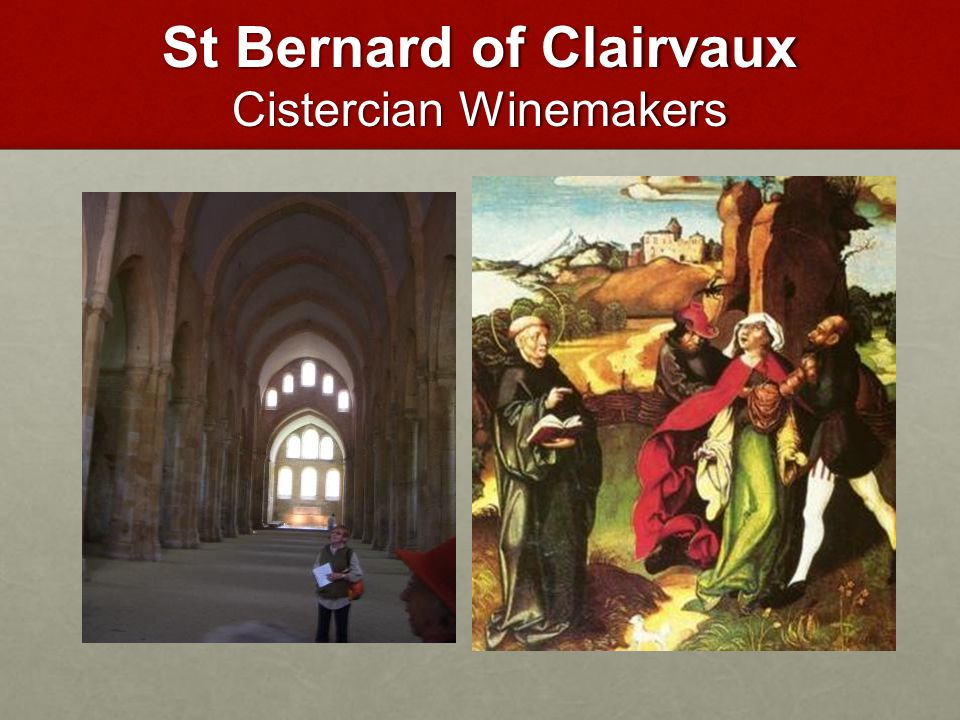 St Bernard of Clairvaux Cistercian Winemakers