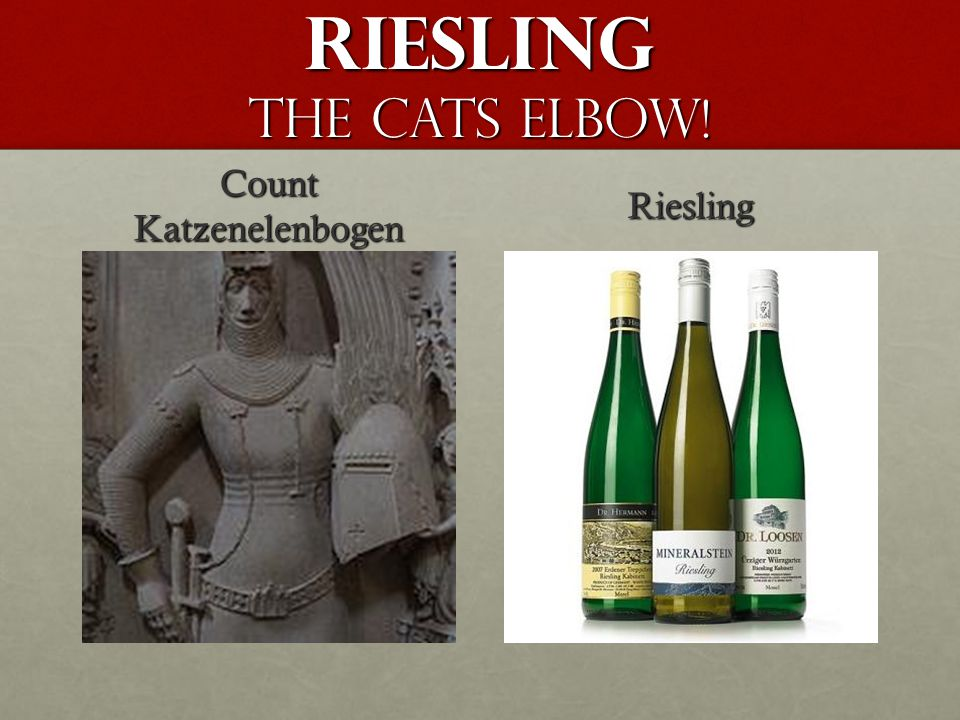 Riesling The Cats Elbow! Count Katzenelenbogen Riesling