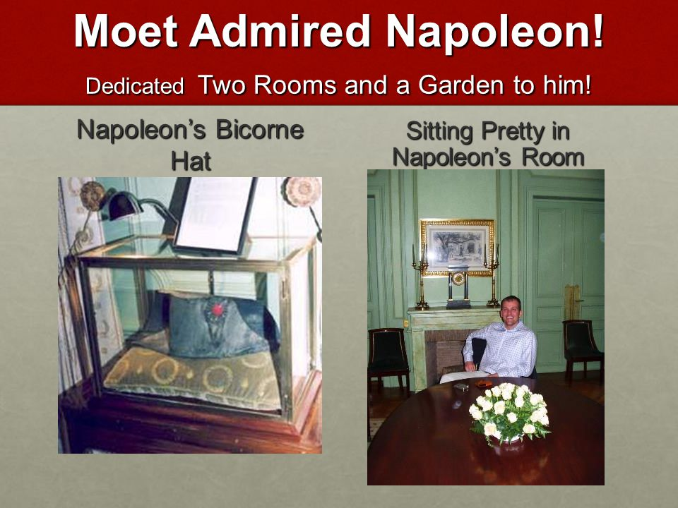 Moet Admired Napoleon.Dedicated Two Rooms and a Garden to him.