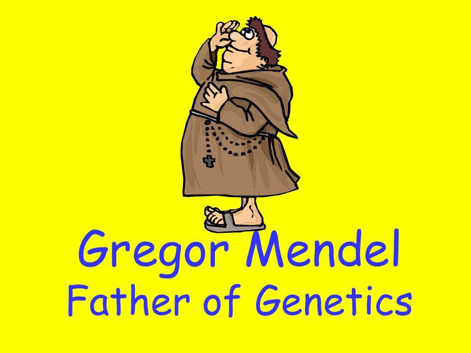 Gregor Mendel Father of Genetics