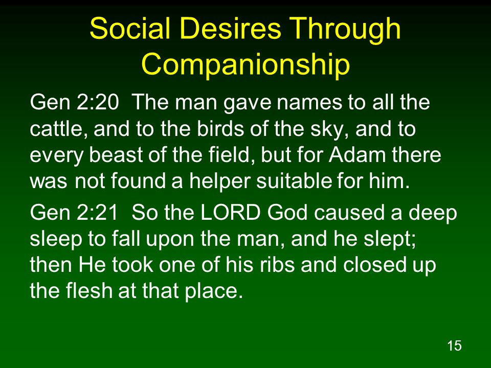 15 Social Desires Through Companionship Gen 2:20 The man gave names to all the cattle, and to the birds of the sky, and to every beast of the field, but for Adam there was not found a helper suitable for him.