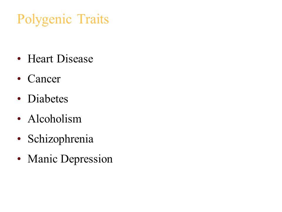 Polygenic Traits Heart Disease Cancer Diabetes Alcoholism Schizophrenia Manic Depression