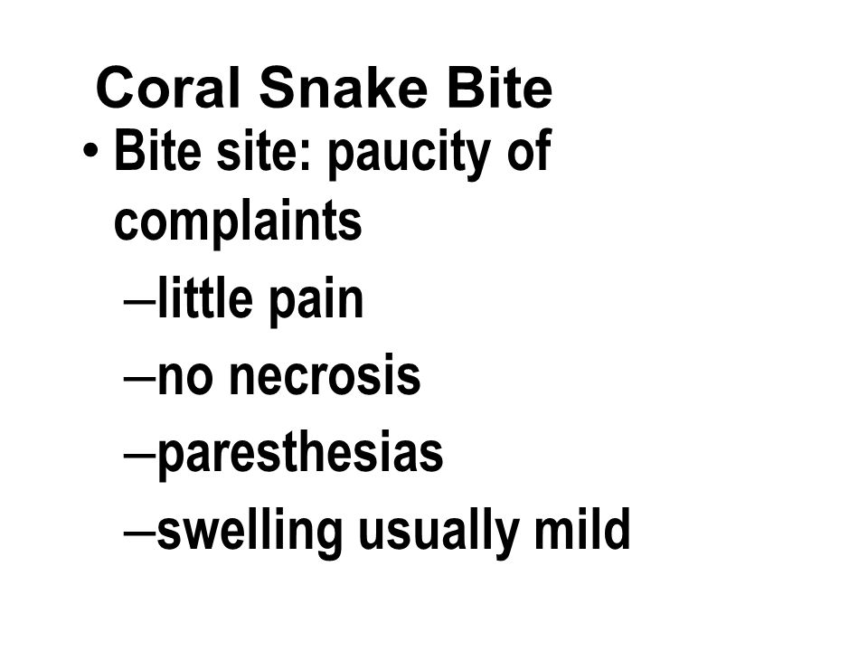 Coral Snake Bite Bite site: paucity of complaints – little pain – no necrosis – paresthesias – swelling usually mild