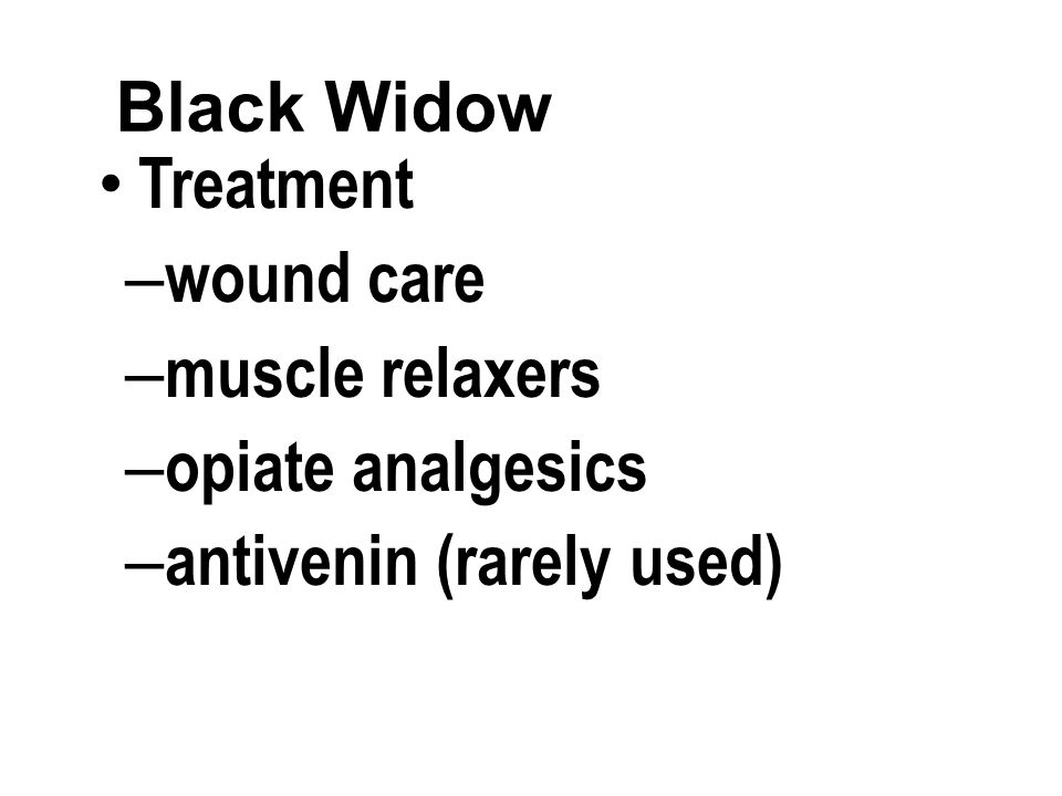 Black Widow Treatment – wound care – muscle relaxers – opiate analgesics – antivenin (rarely used)