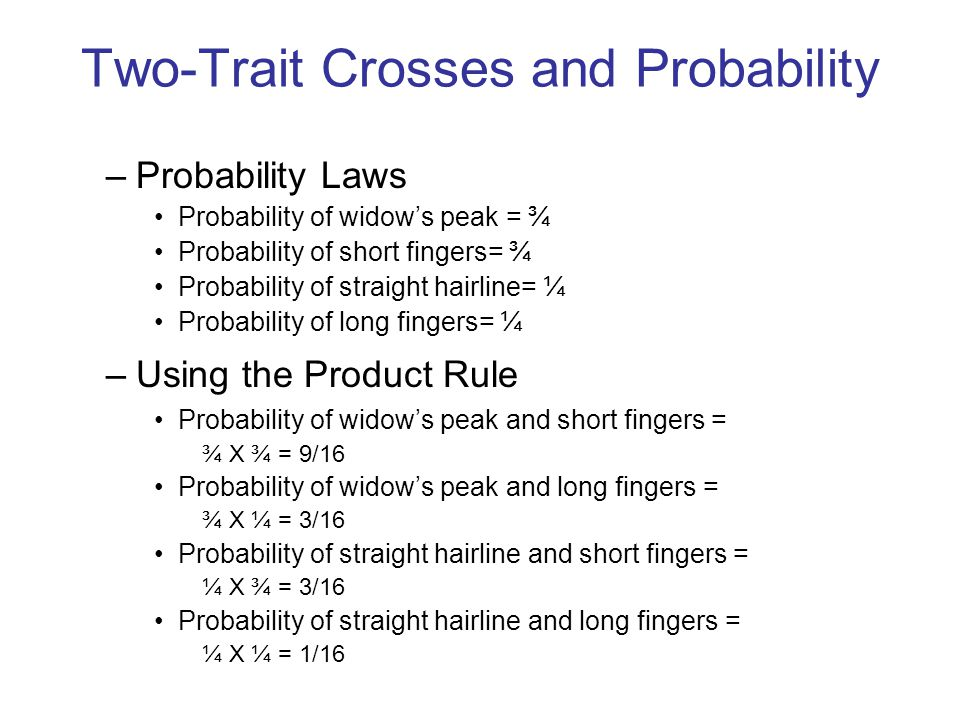 Two-Trait Crosses and Probability –Probability Laws Probability of widow's peak = ¾ Probability of short fingers= ¾ Probability of straight hairline=