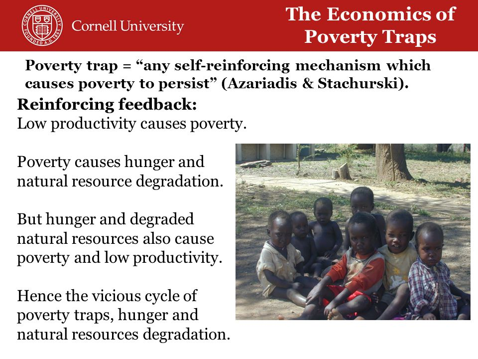 Why development and humanitarian communities' current fascination with resilience .