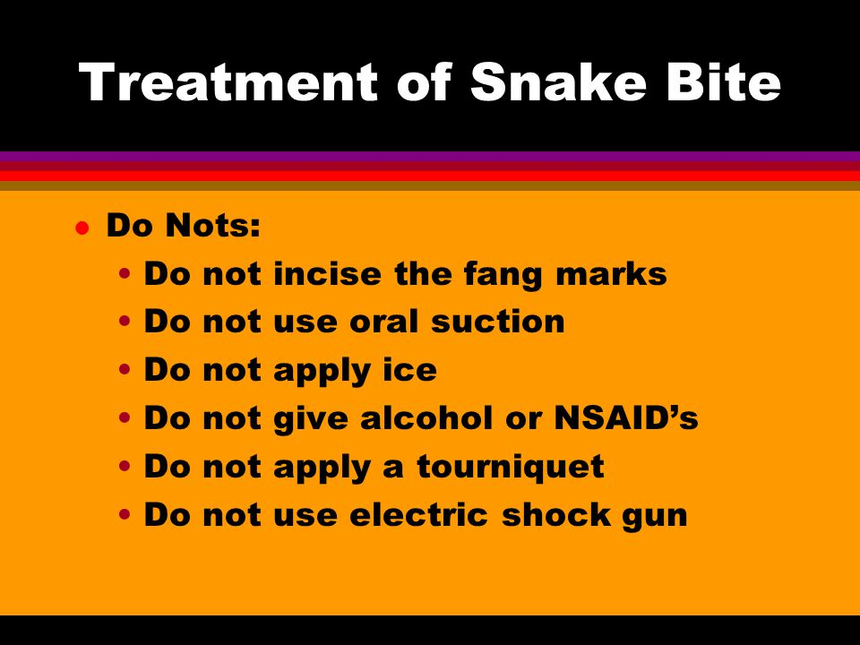 Treatment of Snake Bite l Do Nots: Do not incise the fang marks Do not use oral suction Do not apply ice Do not give alcohol or NSAID's Do not apply a tourniquet Do not use electric shock gun