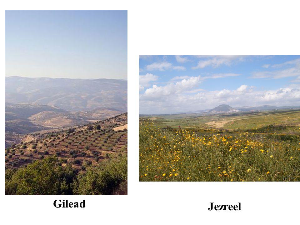 Gilead Jezreel