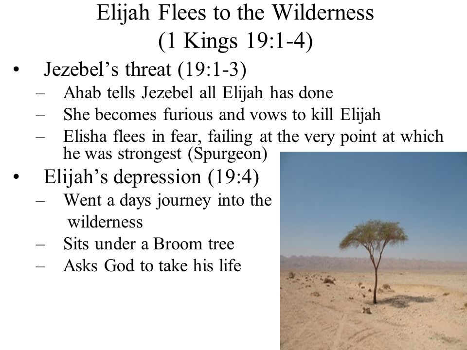 Elijah Flees to the Wilderness (1 Kings 19:1-4) Jezebel's threat (19:1-3) –Ahab tells Jezebel all Elijah has done –She becomes furious and vows to kill Elijah –Elisha flees in fear, failing at the very point at which he was strongest (Spurgeon) Elijah's depression (19:4) –Went a days journey into the wilderness –Sits under a Broom tree –Asks God to take his life