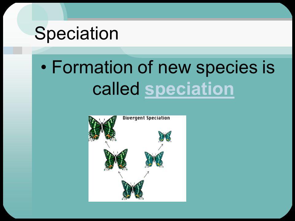 Speciation Formation of new species is called speciationspeciation