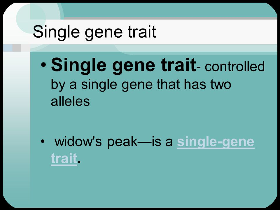 Single gene trait Single gene trait - controlled by a single gene that has two alleles widow s peak—is a single-gene trait.single-gene trait