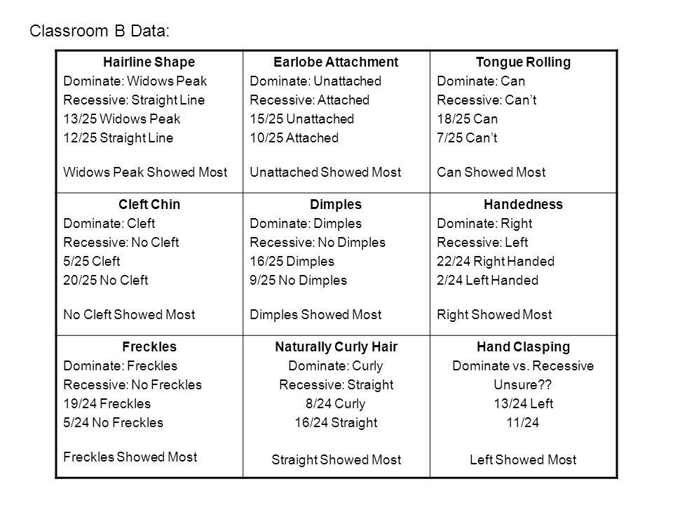 Hairline Shape Dominate: Widows Peak Recessive: Straight Line 13/25 Widows Peak 12/25 Straight Line Widows Peak Showed Most Earlobe Attachment Dominate: Unattached Recessive: Attached 15/25 Unattached 10/25 Attached Unattached Showed Most Tongue Rolling Dominate: Can Recessive: Can't 18/25 Can 7/25 Can't Can Showed Most Cleft Chin Dominate: Cleft Recessive: No Cleft 5/25 Cleft 20/25 No Cleft No Cleft Showed Most Dimples Dominate: Dimples Recessive: No Dimples 16/25 Dimples 9/25 No Dimples Dimples Showed Most Handedness Dominate: Right Recessive: Left 22/24 Right Handed 2/24 Left Handed Right Showed Most Freckles Dominate: Freckles Recessive: No Freckles 19/24 Freckles 5/24 No Freckles Freckles Showed Most Naturally Curly Hair Dominate: Curly Recessive: Straight 8/24 Curly 16/24 Straight Straight Showed Most Hand Clasping Dominate vs.