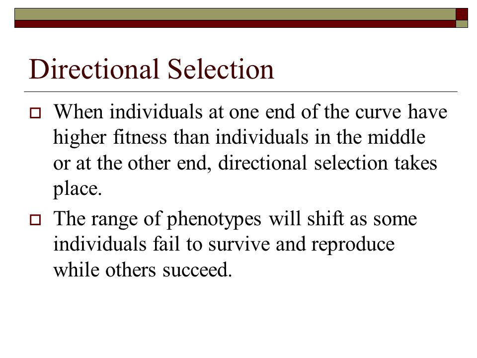 Directional Selection  When individuals at one end of the curve have higher fitness than individuals in the middle or at the other end, directional s