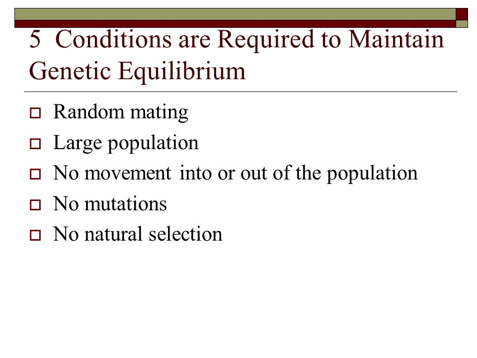5 Conditions are Required to Maintain Genetic Equilibrium  Random mating  Large population  No movement into or out of the population  No mutation