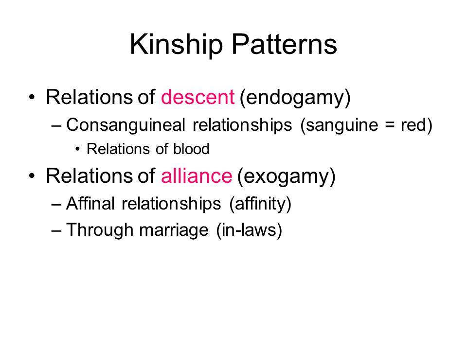 Kinship Patterns Relations of descent (endogamy) –Consanguineal relationships (sanguine = red) Relations of blood Relations of alliance (exogamy) –Affinal relationships (affinity) –Through marriage (in-laws)