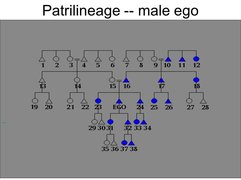 Patrilineage -- male ego
