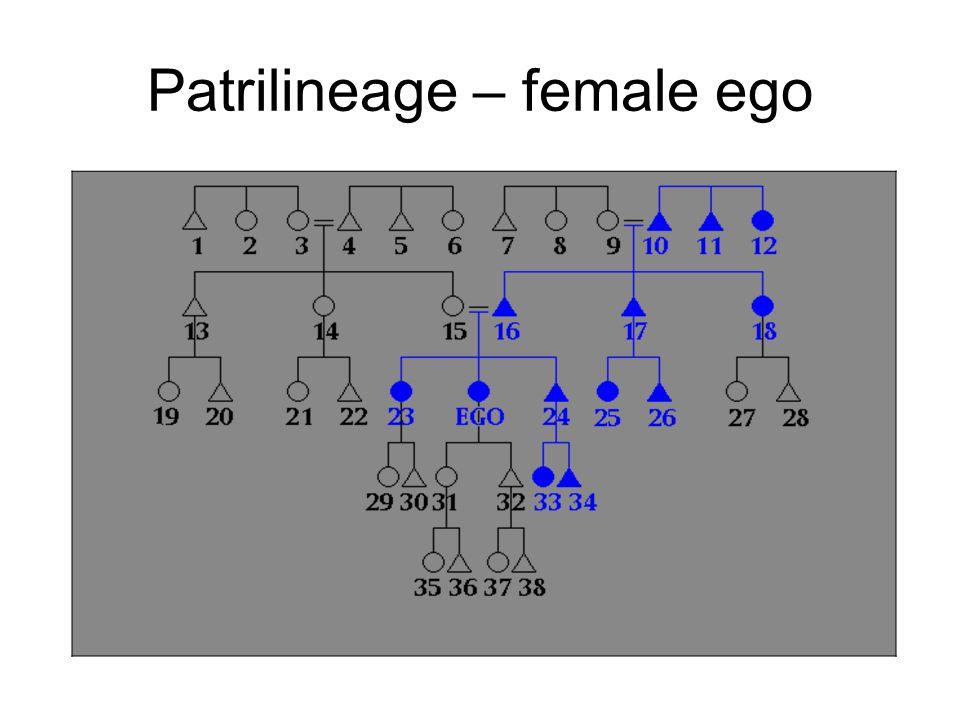 Patrilineage – female ego