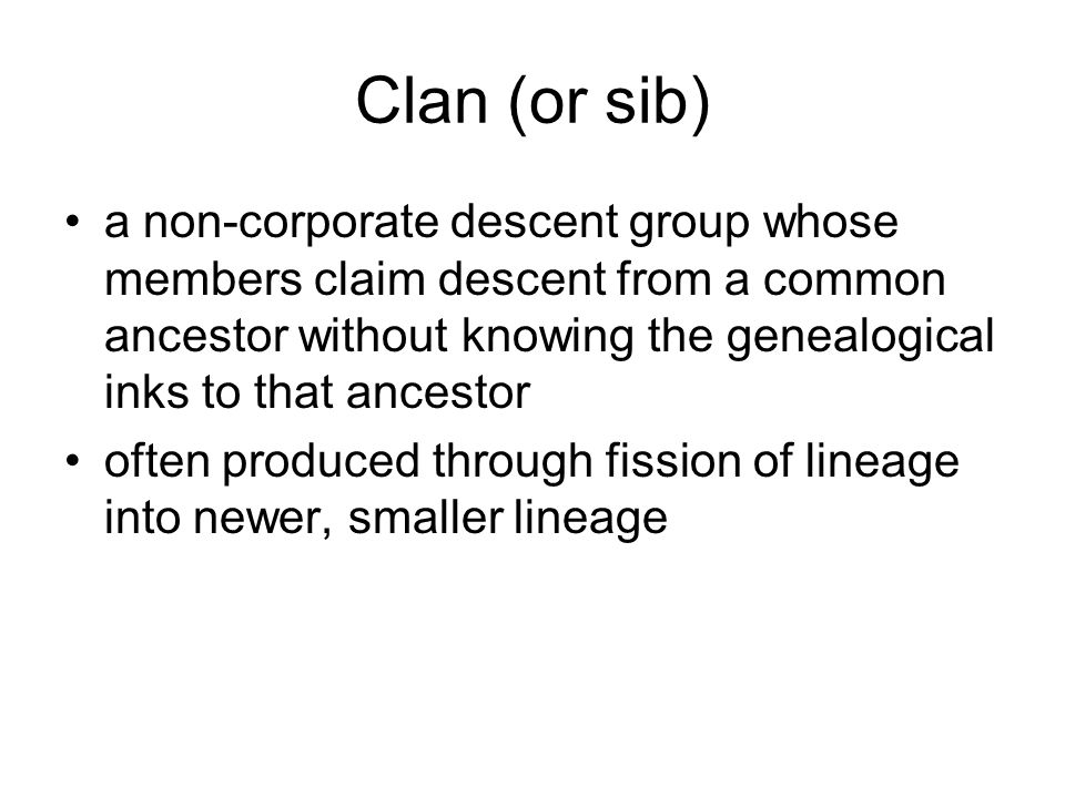 Clan (or sib) a non-corporate descent group whose members claim descent from a common ancestor without knowing the genealogical inks to that ancestor often produced through fission of lineage into newer, smaller lineage