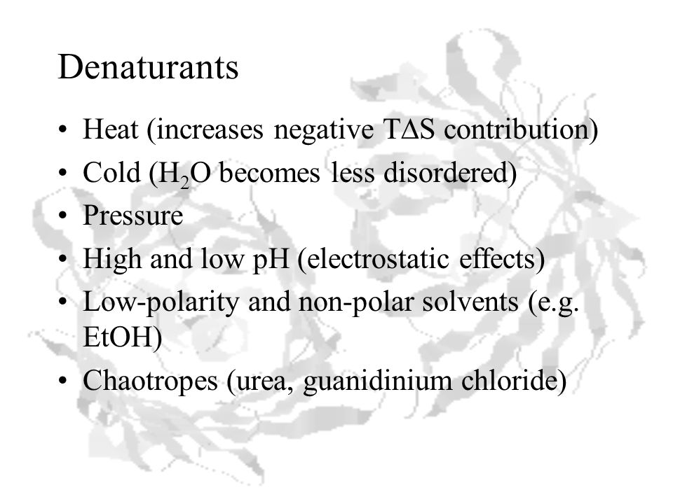 Denaturants Heat (increases negative T  S contribution) Cold (H 2 O becomes less disordered) Pressure High and low pH (electrostatic effects) Low-polarity and non-polar solvents (e.g.