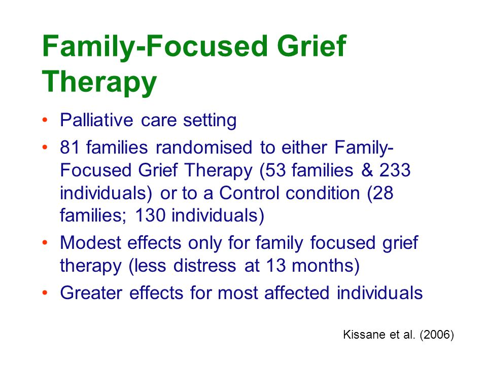 Family-Focused Grief Therapy Palliative care setting 81 families randomised to either Family- Focused Grief Therapy (53 families & 233 individuals) or