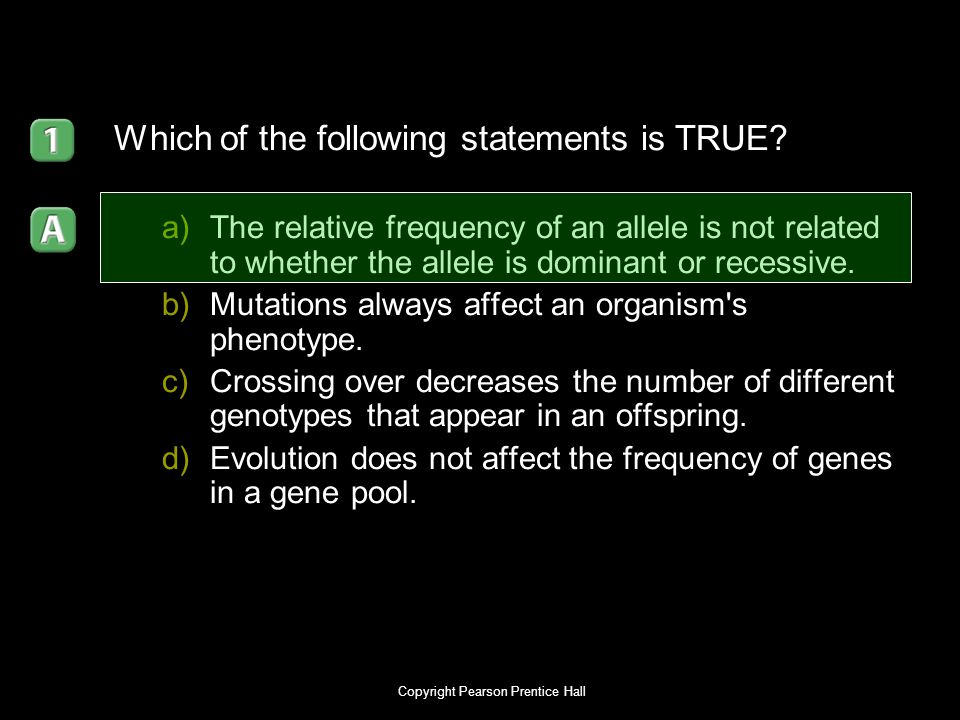 Copyright Pearson Prentice Hall Which of the following statements is TRUE? a)The relative frequency of an allele is not related to whether the allele