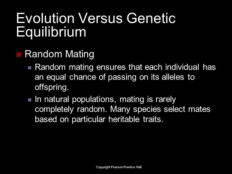 Evolution Versus Genetic Equilibrium Random Mating Random mating ensures that each individual has an equal chance of passing on its alleles to offspri