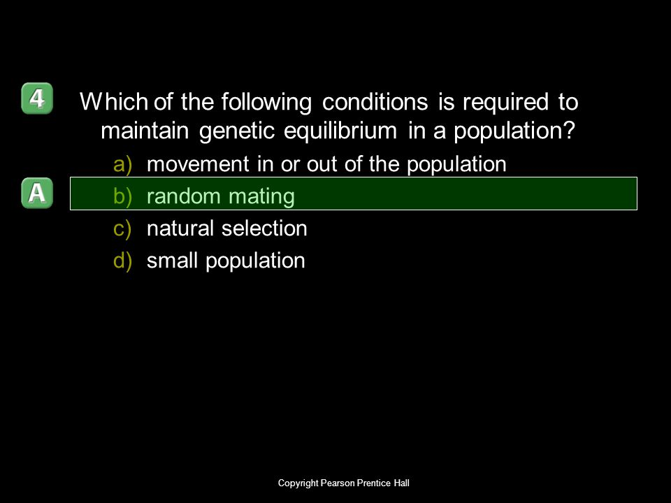 Copyright Pearson Prentice Hall Which of the following conditions is required to maintain genetic equilibrium in a population? a)movement in or out of