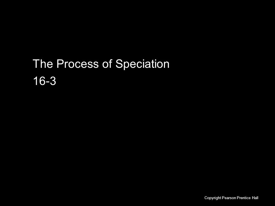 16-3 The Process of Speciation Copyright Pearson Prentice Hall The Process of Speciation 16-3