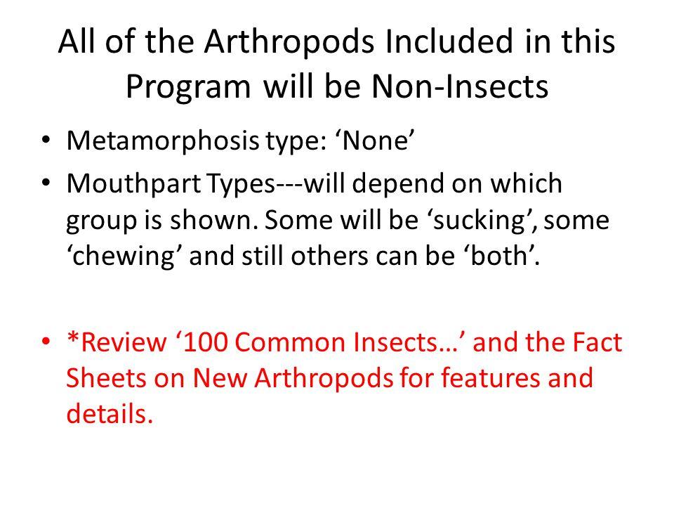 Arthropoda: Class Chilopoda (Centipedes) Metamorphosis: None Mouthparts: Chewing Both Photos: D.B.