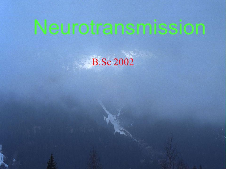 Neurotransmission B.Sc 2002