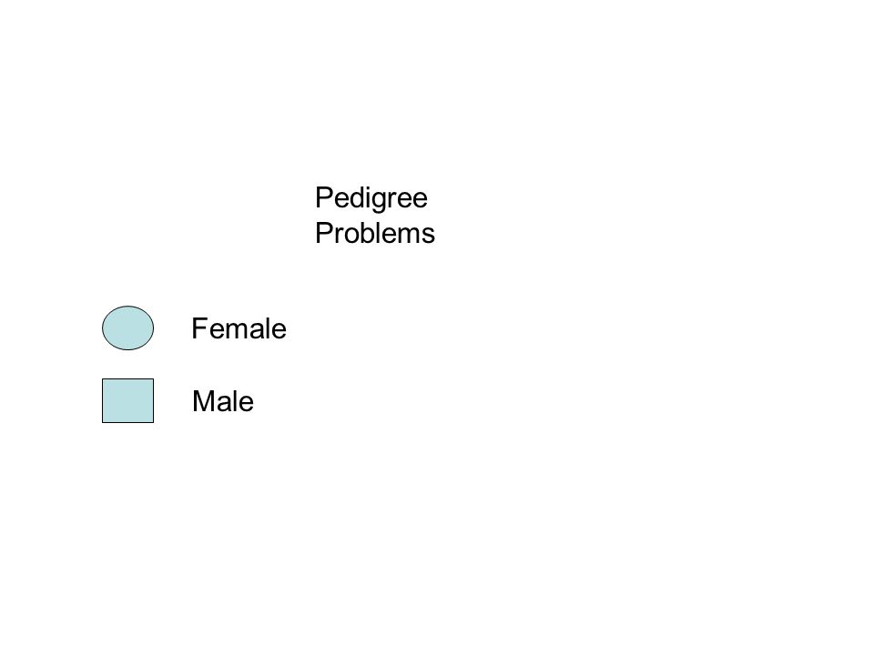 Pedigree Problems Female Male