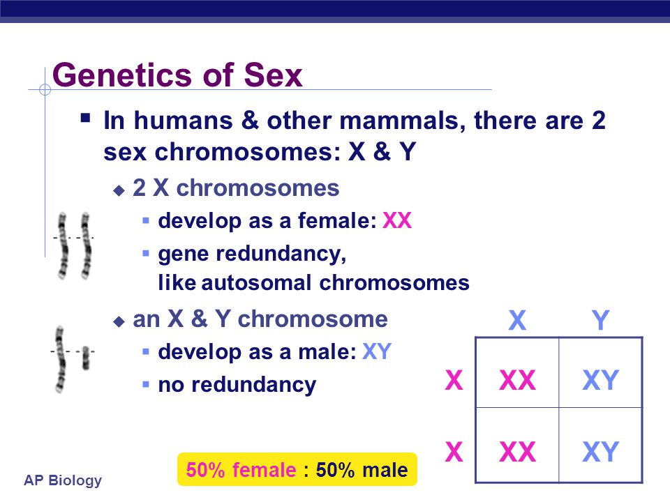AP Biology Huh.Sex matters?.
