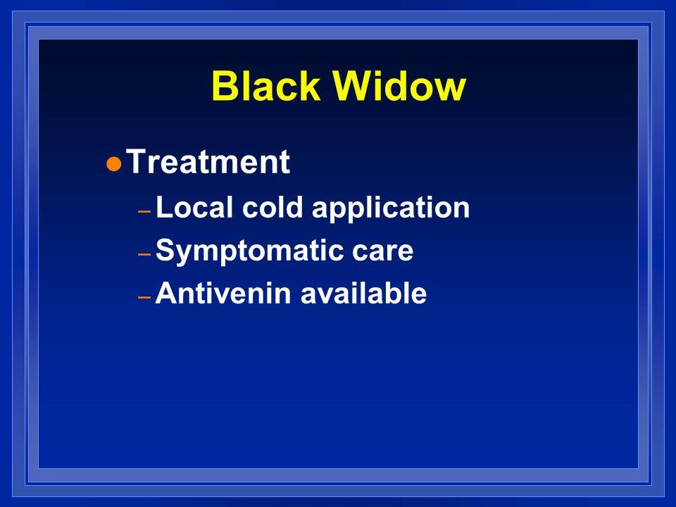 Black Widow l Treatment – Local cold application – Symptomatic care – Antivenin available