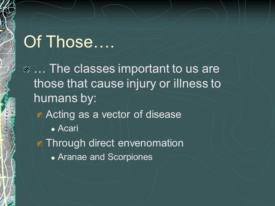 Of Those…. … The classes important to us are those that cause injury or illness to humans by: Acting as a vector of disease Acari Through direct enven