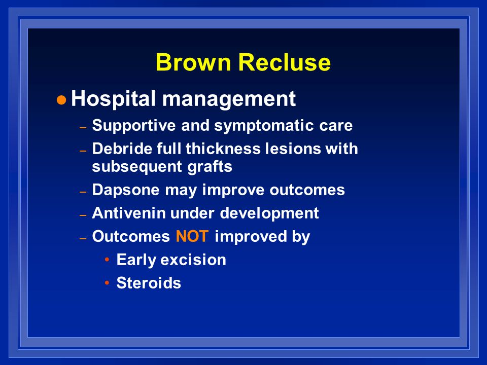 Brown Recluse l Hospital management – Supportive and symptomatic care – Debride full thickness lesions with subsequent grafts – Dapsone may improve outcomes – Antivenin under development – Outcomes NOT improved by Early excision Steroids